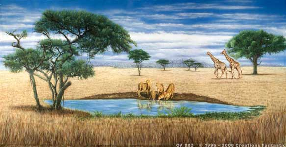 Backdrop OA003 African Savannah 3