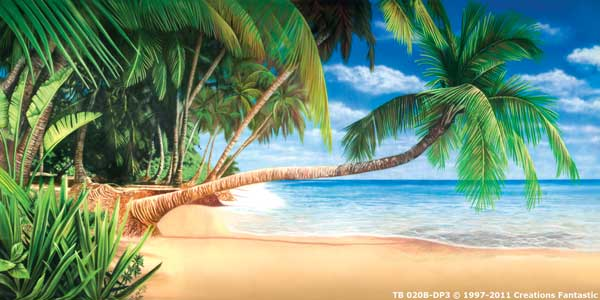 Backdrop TB020B-DP3 Tropical Beach 7B