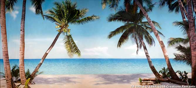 Backdrop TB080-S Tropical Beach 16