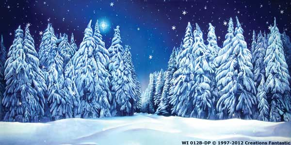Backdrop WI 012B-DP Winter Wonderland 5B
