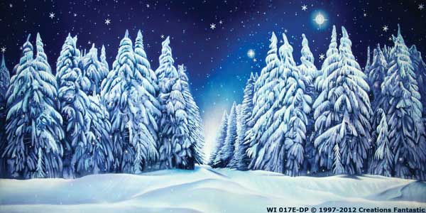 Backdrop WI 017E-DP Winter Wonderland 9E