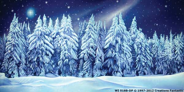 Backdrop WI 018B-DP Winter Wonderland 10B