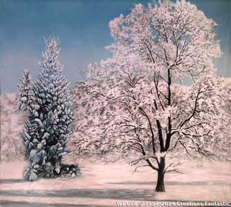 Backdrop WI 058 Winter Tree Landscape 5