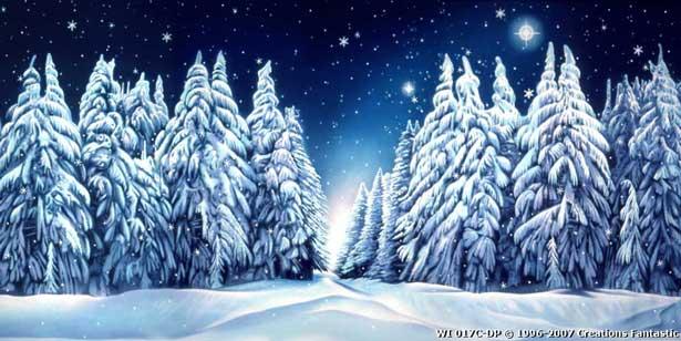Winter Wonderland 9C